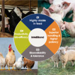 4 divided image containing farm animals