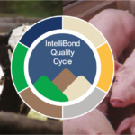 IntelliBond Quality Cycle badge